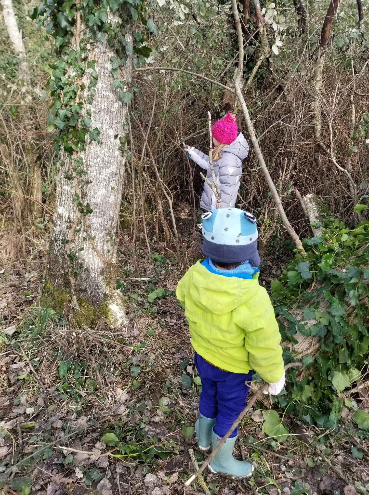 travaux forestiers enfants